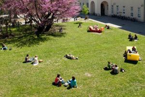 Menschen entspannen sich auf der Wiese am Campus der Universität Wien